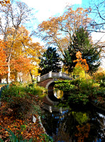 Autumn Colours in the Parc Monceau