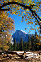 Half Dome at Yosemite